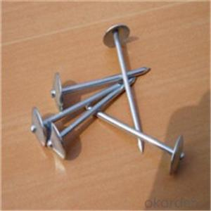 Different Head Shape Roofing Nails CNBM Brand with High Quality