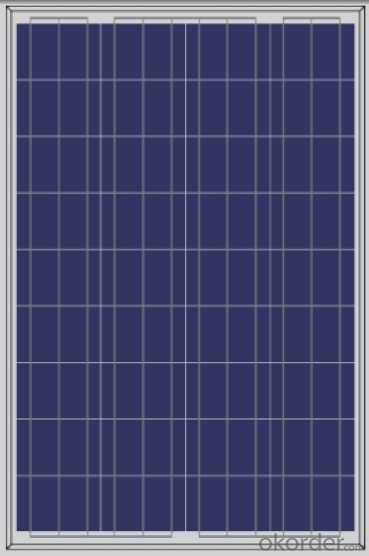 Solar Panel  Polycrystalline  156 Series  from CNBM with Competitive Price