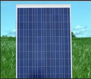 Poly Solar Module 120w  from CNBM ,China with Good Price