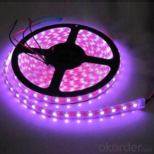Wholesale Flexible SMD 5050 RGB LED Strip Light