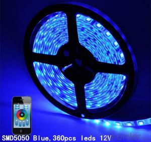 Best Led Lighting Factory 12V/24V Led Strip Light SMD3528 5050