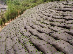 PP Fiber Geotextile Bags, Reinforced River Dike