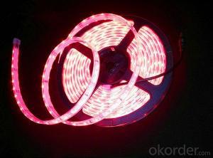 LED RGB Strip with 3014 SMD LED, R/G/B/Y/W/RGB Option