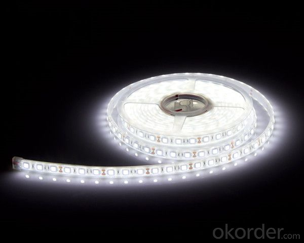 CE ROHS 12V/24 V SMD3528- 60LED Flexible LED Strip Lights