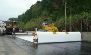 PP Staple Fiber Geotextile, Landfill Projects