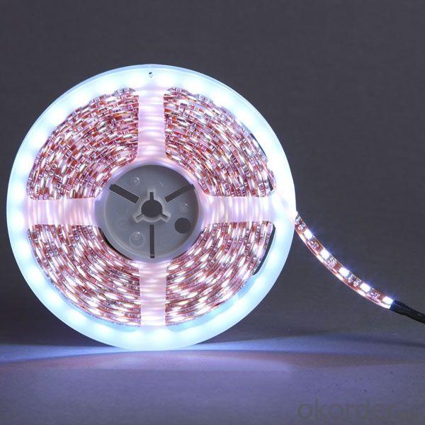 12V/24V 30leds/m RGB Waterproof Flexible SMD5050 LED Strip Light