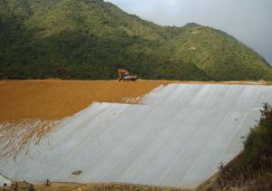 PP Staple Fiber Geotextile for Landfill Projects