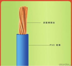 Single Core PVC Insulated Flexible Cable 300 /500V