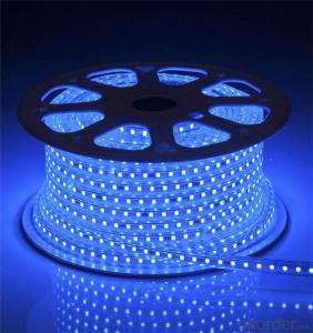 5050 smd Led Strip Lights