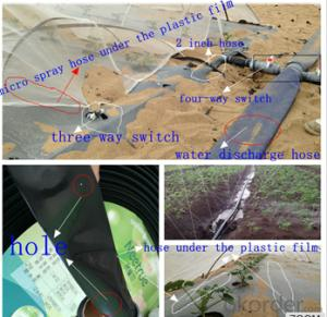 Drip Irrigation Tape For Greenhouse Agriculture