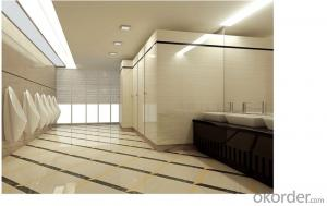Polished Porcelain Tile Double Loading CMAX-Q8103