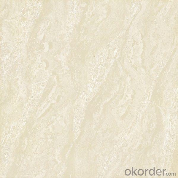 Polished Porcelain Tile Double Loading CMAX-C8301