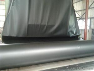Plastic Sheet Hdpe Geomembrane with Colorful for Pond