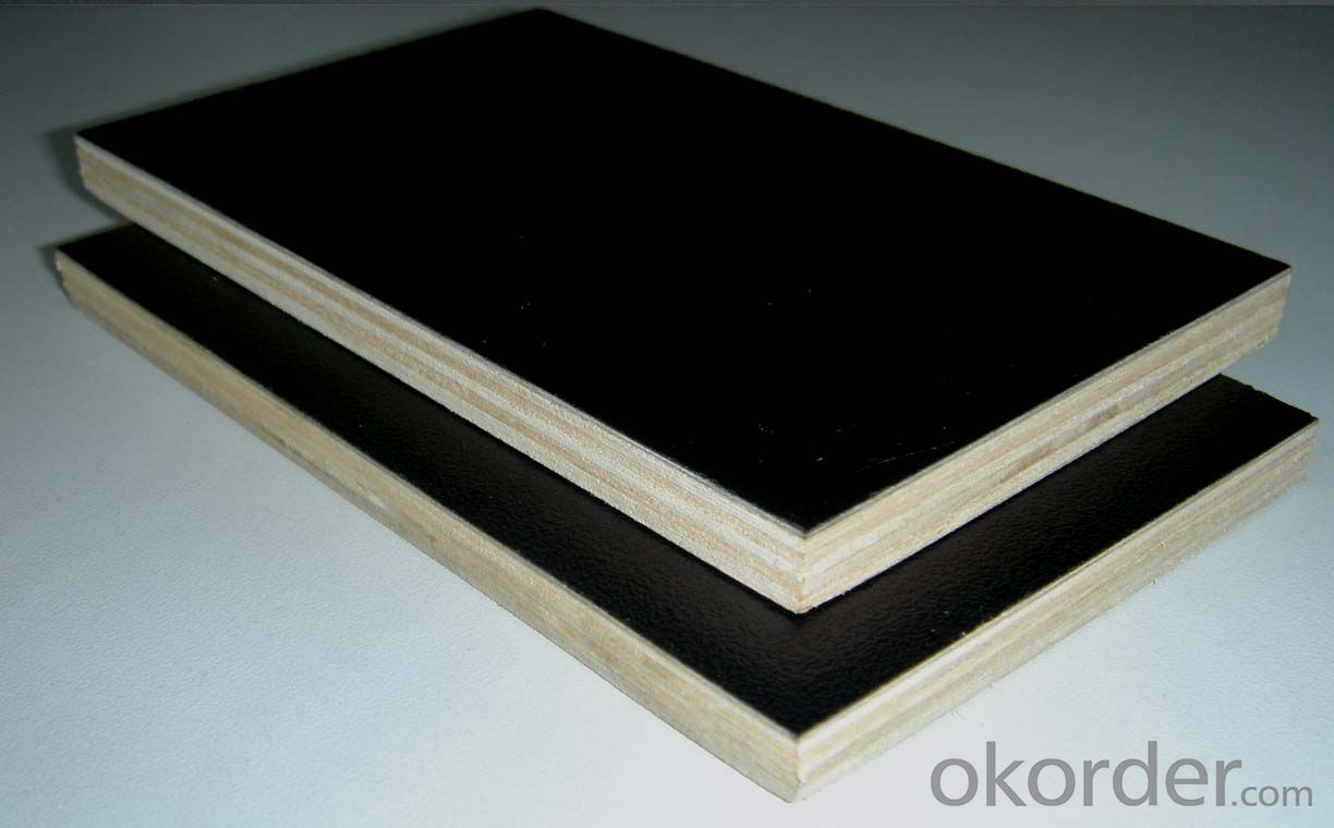 Black  Film Faced Plywood with Logo MR Glue