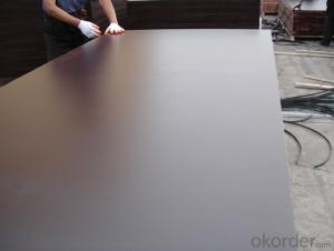 Brown Film Faced Plywood Prices 21mm Melamine Glue Poplar Core