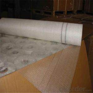 Alkali Resistant Coated Fiberglass Soft Mesh 125g/m2 5*5mm  High Strength