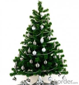 Christmas Tree 2ft-12ft with Factory Price