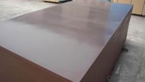 Film Faced plywood Laminated Plywood CMAX