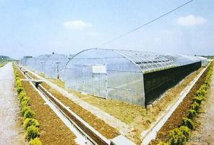 Glass sheet Greenhouses for Study or Plants Grow