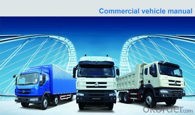 Chenglong  6*4 Cargo Truck with Lower Consumption