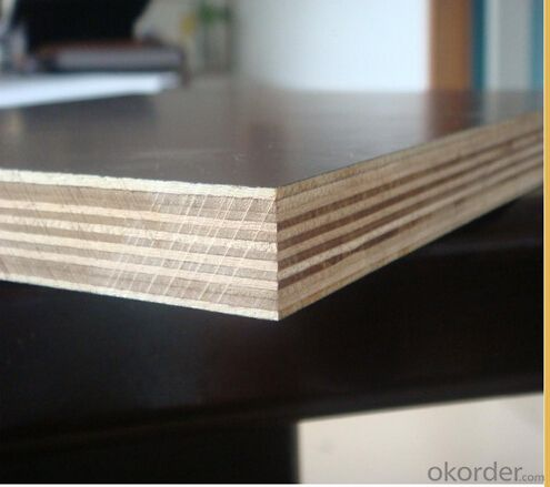 Marine  Film Faced Plywood with Best Quality