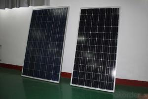 Solar Panels Solar Modules 245W Poly Factory New Design