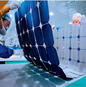 CNBM Polycrystalline Silicon Solar Cells156mm (14.00%—17.25%)