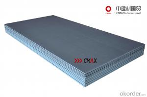 XPS 6 and 10mm Under Tile Backer Board for Shower Room CNBM Group