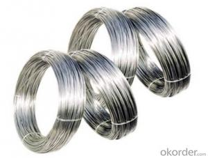Stainless Steel Wire Rod/ Dia 0.5mm Stainless Steel Wire