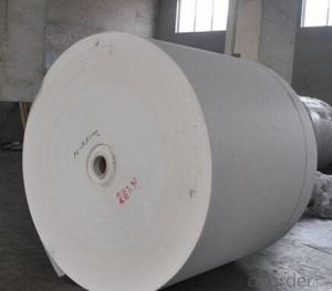 Long Fiber Polyester Felt/Polyester Mat For SBS Bitumen Waterproof Membrane