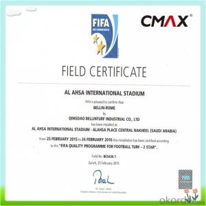 PE Monofilament Yarn Field Green Soccer Artificial Grass 5/8'' Gauge , Height 20mm to 60mm