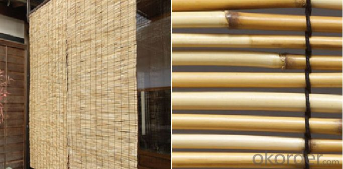 Natural Reed Fence Garden Decoration for Decoration