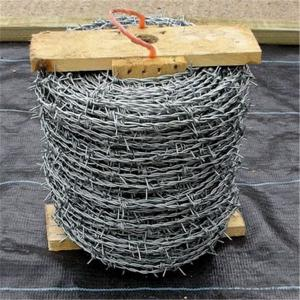 Galvanized barbed wire, IOWA, MOTTO, BWG14*14 BWG16*16 200m/250m/400m/500m for Brasil, Peru