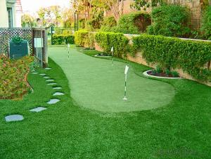 Landscaping Grass with Great Quality and Cheap Price