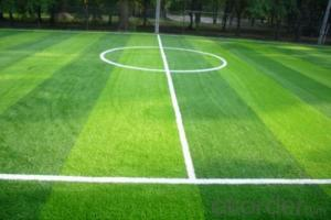 Soccer Artificial Grass Turf for Sports Coating PE
