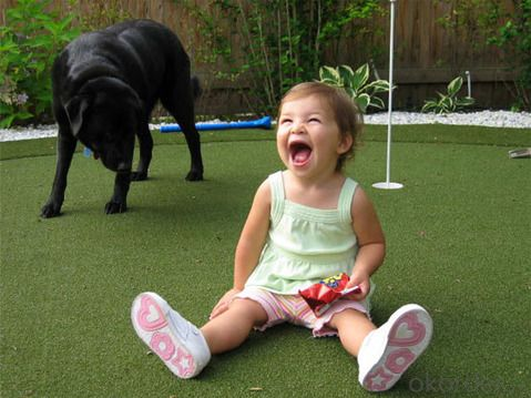 Artificial Grass for Kids/Pet Made in China