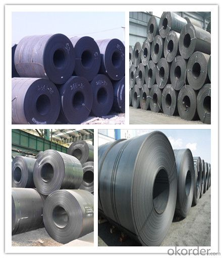 Prime Hot Rolled Coil HR Steel Coil China Supplier