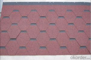 Plan Standard Weatherproof Bitumen Asphalt Shingle