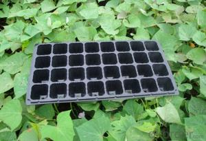 Plug Trays (Growing and Seedling) Greenhouse Usage Flat Tray HIPS Made Plastic