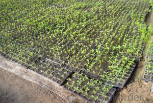 Greenhouse Usage Plug Trays (Growing and Seedling) HIPS Made Plastic Seed Tray