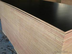 Poplar Core Brown Film Melamine Glue Film Faced Plywood