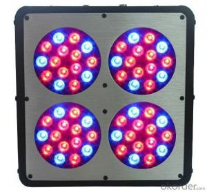 LED Grow Light 180W led RainbowModule Design Made in China