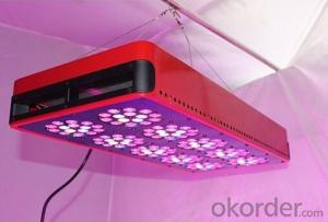 LED Grow Light 2015 High Quality 450W 6000Lumens CE&ROSH Approved