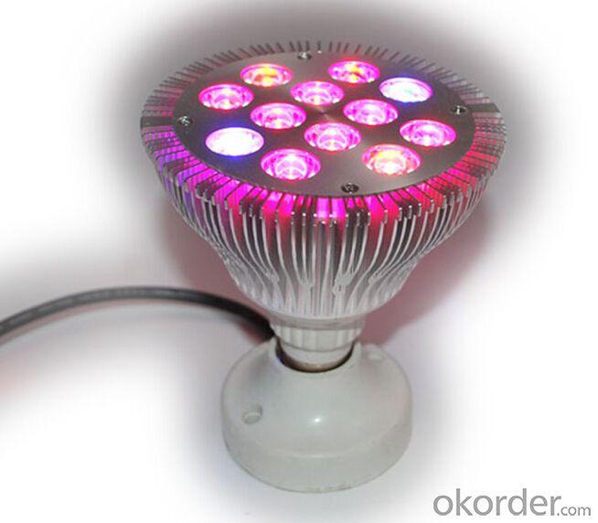 LED Grow Light 12W PAR LED Grow Light LED Plant Light Bulb E27 15w Led Grow Bulb