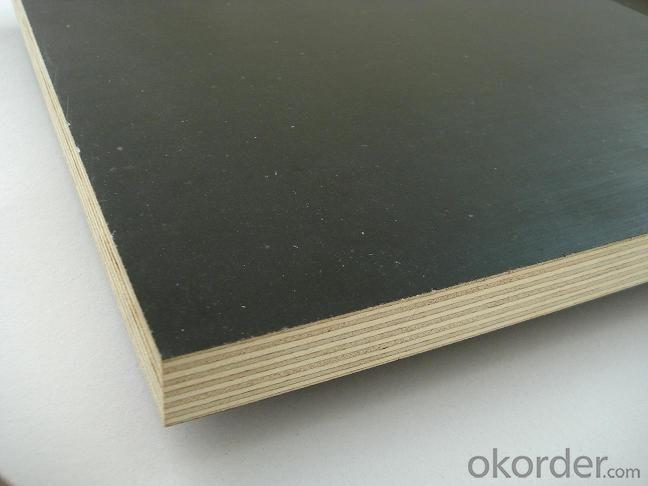 Shuttering Plywood Film Faced Plywood Marine Plywood Waterproof