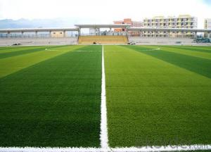 Synthtic Turf Artificial Grass for Baseball Hockey Basketball Golf Tennis