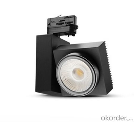 LED Spot Light Provide OEM or ODM Service Made in China