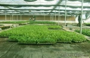 Weed Barrier Fabric for Agriculture/Woven Fabric 160g