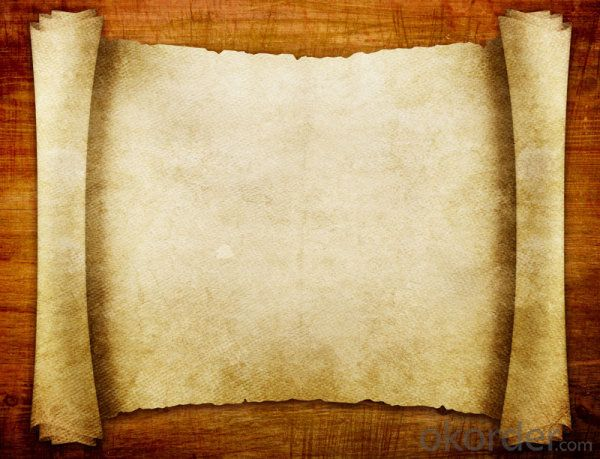 Copy Paper Factory/80g 75g 70g A4 Copy Paper