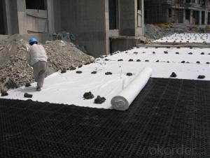 Black Polypropylene(PP) Geotextile for Road Construction
